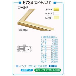 額縁 デッサン額 アルミフレーム アクリル仕様 6734 (ロイヤル21) MO判サイズ|touo