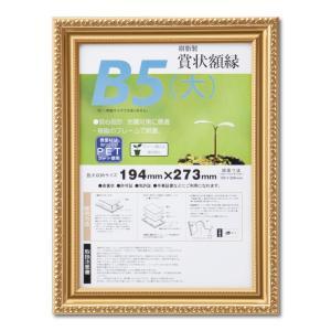 賞状額縁 フレーム 許可証額縁 金消し-R PET B5(大)サイズ SP|touo