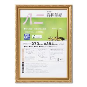 賞状額縁 フレーム 許可証額縁 金消-R PET 八二サイズ SP|touo
