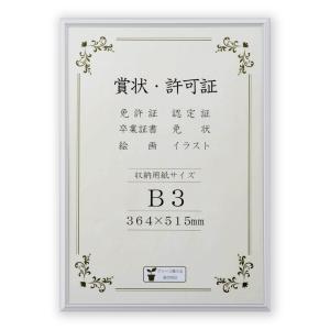 賞状額縁 フレーム 許可証額縁 オールライト PET B3サイズ 箱入 touo