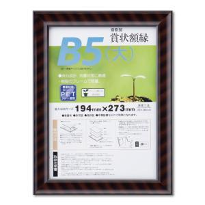 賞状額縁 フレーム 許可証額縁 金ラック-R PET B5(大)サイズ SP|touo