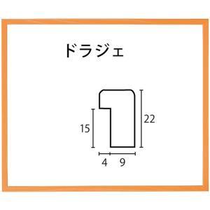 額縁 アートフレーム 色紙額縁 木製 ドラジェ 274X244mm|touo