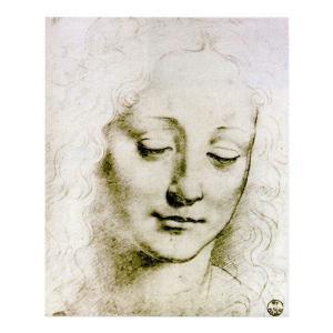 絵画 壁掛け 額縁 アートフレーム付き レオナルド・ダ・ヴィンチ 「若い女の頭部」 半切 世界の名画シリーズ プリハード|touo