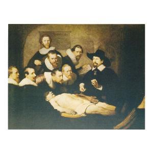 絵画 壁掛け 額縁 アートフレーム付き レンブラント・ファン・レイン 「解剖学講義」 F6号 世界の名画シリーズ プリハード|touo