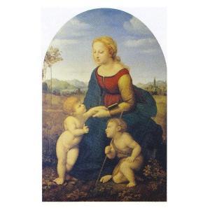 絵画 壁掛け 額縁 アートフレーム付き ラファエルロ・サンティ 「美しき女庭師の聖母」 M20A号 世界の名画シリーズ プリハード|touo