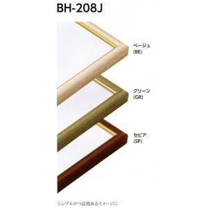 額縁 デッサン額 アルミフレーム BH-208J サイズインチ|touo