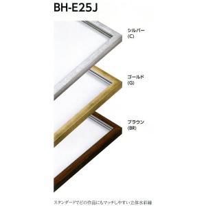 額縁 デッサン額 樹脂フレーム BH-E25J サイズインチ|touo