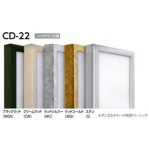 仮縁 正方形の額 アルミフレーム CD-22 サイズS6号|touo