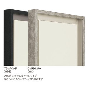 仮縁 正方形の額 アルミフレーム CX-62 サイズS50号|touo