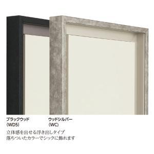 仮縁 正方形の額 アルミフレーム CX-62 サイズS6号|touo