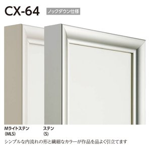 額縁 仮縁 油彩額 油絵額縁 仮縁 アルミフレーム CX-64 サイズP150号|touo