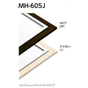 額縁 デッサン額 アルミフレーム MH-605J サイズインチ|touo