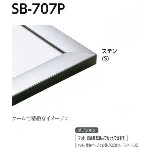 額縁 デッサン額 アルミフレーム SB-707P サイズMO判 touo