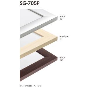 額縁 水彩額縁 アルミフレーム (大サイズ 軽量タイプ) SG-705P サイズ水彩半切|touo