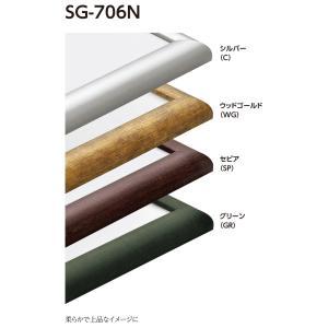 額縁 水彩額縁 アルミフレーム (大サイズ 軽量タイプ) SG-706N サイズ水彩半切|touo