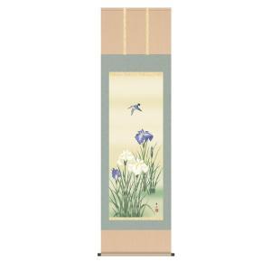 掛け軸 掛軸 純国産掛け軸 床の間 花鳥画 「菖蒲」 緒方葉水、尺五、桐箱付|touo
