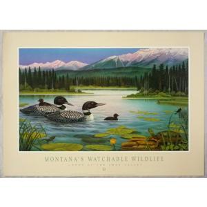 アメリカ製アートポスター モンテ・ドラック作 「Montana's Wildlife 」 シ−トサイズ81X57cm 特価|touo