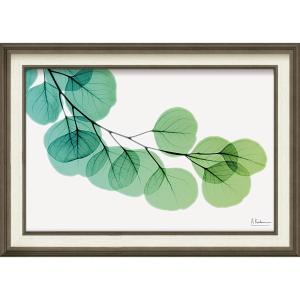 絵画 インテリア アートポスター X RAY キャンバスアート「ユーカリ(Mサイズ)」|touo