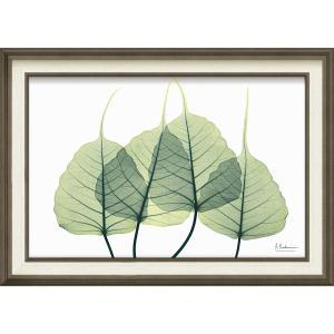 絵画 インテリア アートポスター X RAY キャンバスアート「リーフ3(Mサイズ)」|touo