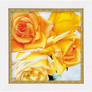 絵画 インテリア アートポスター 壁掛け (額縁 アートフレーム付き) ミニゲル アート アニー バードラット「アンバークウィーン」|touo