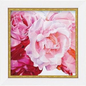 絵画 インテリア アートポスター 壁掛け (額縁 アートフレーム付き) ミニゲル アート アニー バードラット「ローズ2」|touo