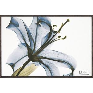 X RAY キャンバスアート「リリー(Sサイズ)」|touo