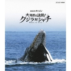NHKスペシャル 大海原の決闘! クジラ対シャチ Blu-ray Disc 特典あり