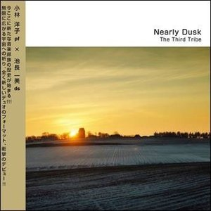 THE THIRD TRIBE NEARLY DUSK CD