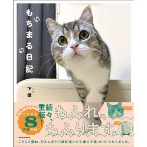 下僕 もちまる日記 Book|タワーレコード PayPayモール店