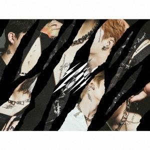 Stray Kids Scars/ソリクン -Japanese ver.- [CD+スペシャルZINE+PHOTO BOOK (TypeC)]<初回生産限定盤C> 12cmCD Single ※特典ありの画像