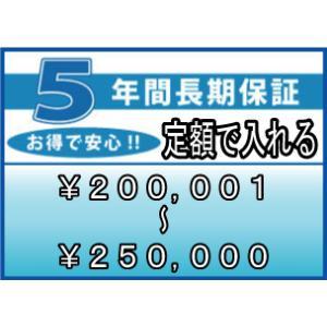 ワランティ 5年間延長保証 (商品:税込価格 200,001〜250,000円) entyouhosyo-12500|townmall