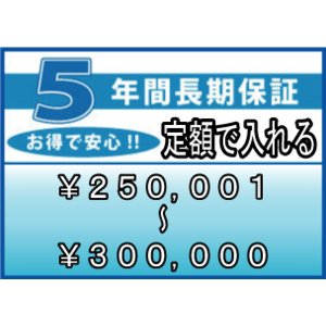 ワランティ 5年間延長保証 (商品:税込価格 250,001〜300,000円) entyouhosyo-15000|townmall
