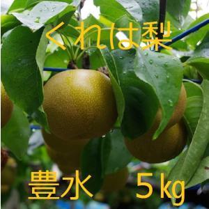 吉田梨園の豊水(呉羽梨)5kg|toyama-ya