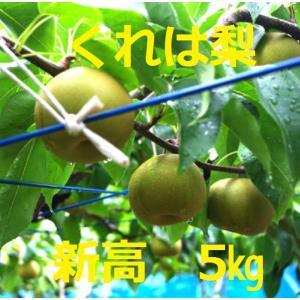吉田梨園の新高(呉羽梨)5kg|toyama-ya