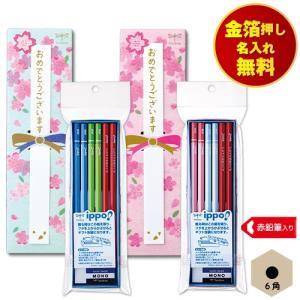 【商品サイズ】 ケース 205×60×20mm  【セット内容】 ・六角鉛筆10本 ・赤鉛筆2本 ・...