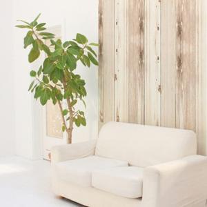ウォールデコレーション はがせる シールタイプ 簡単 プチリフォーム 壁紙 KABEDECO カベデコ ホワイトウッド 2.5m メーカー直販|toyocase-store