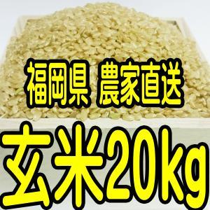 福岡県産 無農薬栽培米 新米 玄米20キロ(分つきも対応しま...