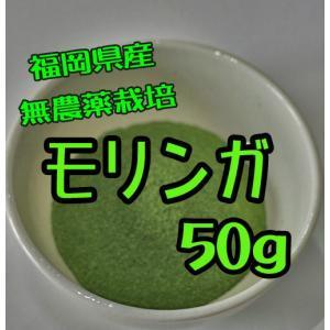 福岡県産 モリンガ粉末50g...