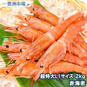 赤海老 あかえび アカエビ 2kg(業務用×1箱)