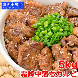 中落ち カルビ 牛カルビ 焼肉 合計 5kg 500g×10パック 業務用 味付け 牛肉 肉 お肉 熟成 鉄板焼き ステーキ BBQ ギフト toyosushijou