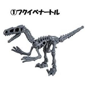 ほねほねザウルス×福井県立恐竜博物館 第2弾 [1.フクイベナートル]【 ネコポス不可 】|toysanta