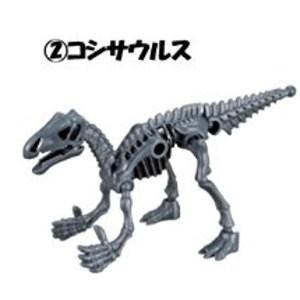 ほねほねザウルス×福井県立恐竜博物館 第2弾 [2.コシサウルス]【 ネコポス不可 】|toysanta