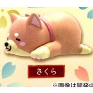 忠犬もちしば だらりんフィギュア [7.さくら]【ネコポス配送対応】|toysanta