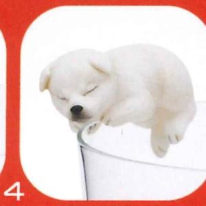 PUTITTO 柴犬 SHIBAINU [4.白毛(いねむり)]【ネコポス配送対応】|toysanta