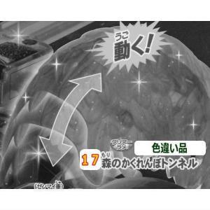 カプセルプラレール きかんしゃトーマス キラキラなヒロと森のかくれんぼ編 [17.森のかくれんぼトンネル(色違い品):クリアーラメ]【 ネコポス不可 】|toysanta