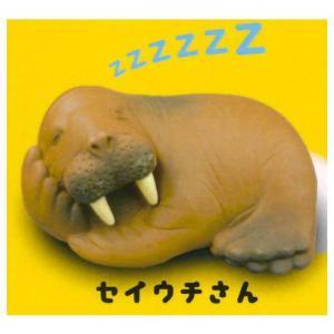のんびりのほほん お昼寝アニマル [2.セイウチさん]【 ネコポス不可 】|toysanta