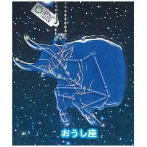 サイエンステクニカラー 冬の星座 蓄光アクリルマスコット [2.おうし座]【ネコポス配送対応】|toysanta