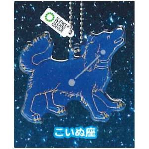 サイエンステクニカラー 冬の星座 蓄光アクリルマスコット [6.こいぬ座]【ネコポス配送対応】|toysanta