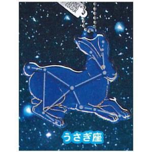 サイエンステクニカラー 冬の星座 蓄光アクリルマスコット [7.うさぎ座]【ネコポス配送対応】|toysanta