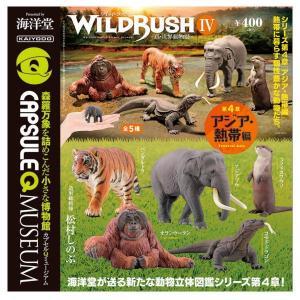 【全部揃ってます!!】カプセルQミュージアム WILD RUSH 真・世界動物誌 IV 第4章 アジ...